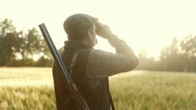 Hunting at golden hour