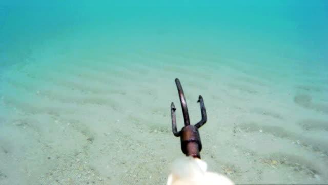 polowanie sceny podwodne - spoiler filmów i materiałów b-roll