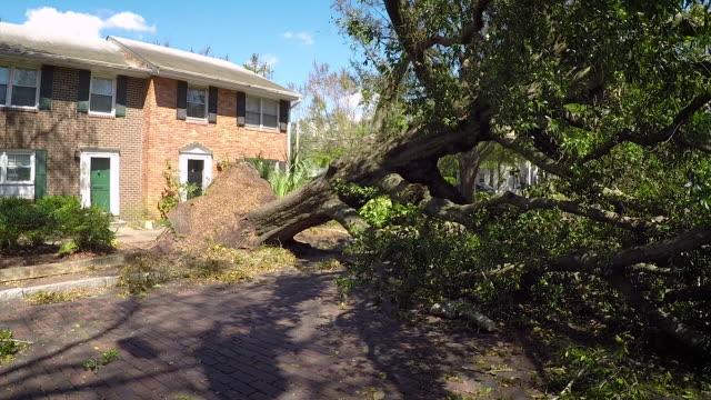 orkanen florence efterdyningarna - skada bildbanksvideor och videomaterial från bakom kulisserna