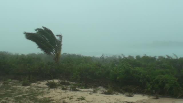 Hurricane force winds video