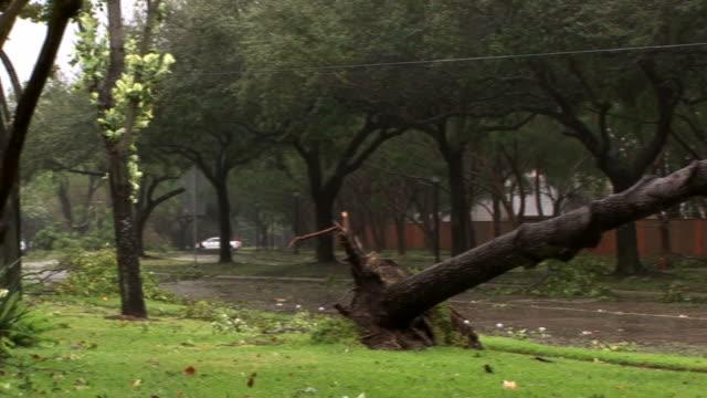 vidéos et rushes de ouragan mess - endommagé