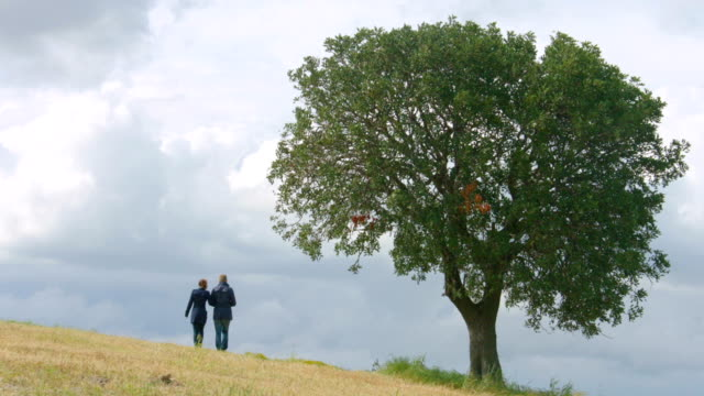Husband and wife walking in field hand in hand, married video