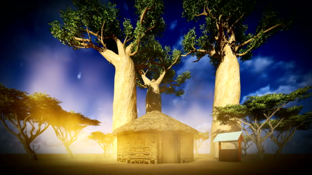 Hut between baobabs Madagascar baobab tree stock videos & royalty-free footage