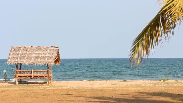 Hut on the beach video