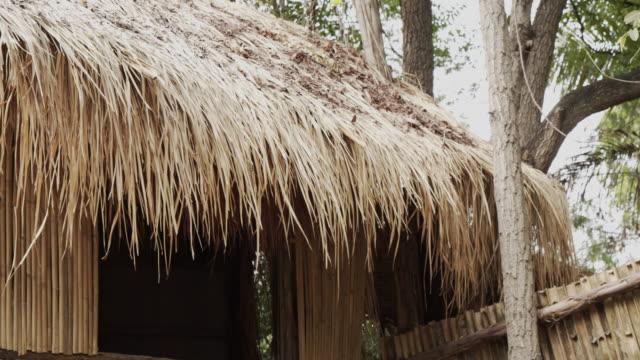 hut roof - paglia video stock e b–roll
