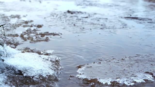 ice crystals frozen water video