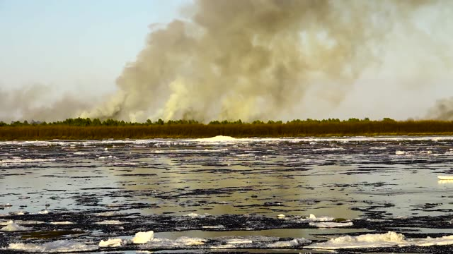 ice drift on the big river and forest fire - ice on fire video stock e b–roll