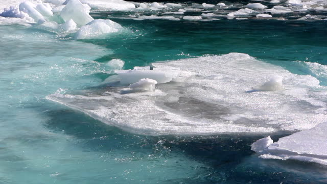 Ice drift on the turquoise river in the spring video