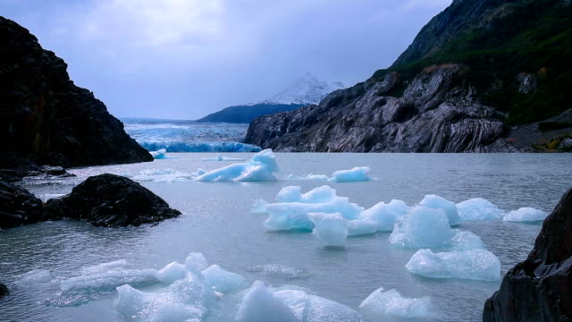 ice floating in grey glacier patagonia, chile - ледник стоковые видео и кадры b-roll