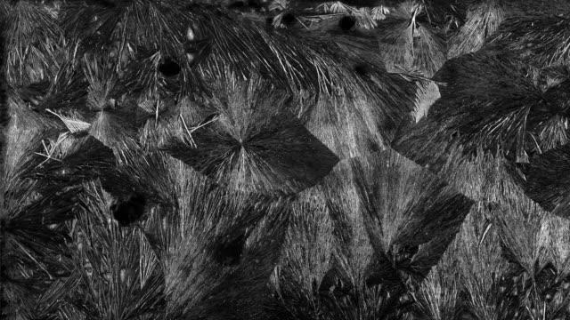 gelo fiori di ghiaccio - brina ghiaccio video stock e b–roll