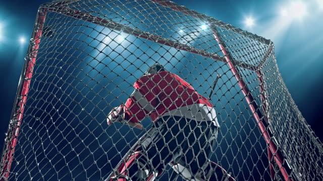 stockvideo's en b-roll-footage met ice hockey keeper - samen sporten