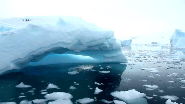Icebergs in Antarctica video