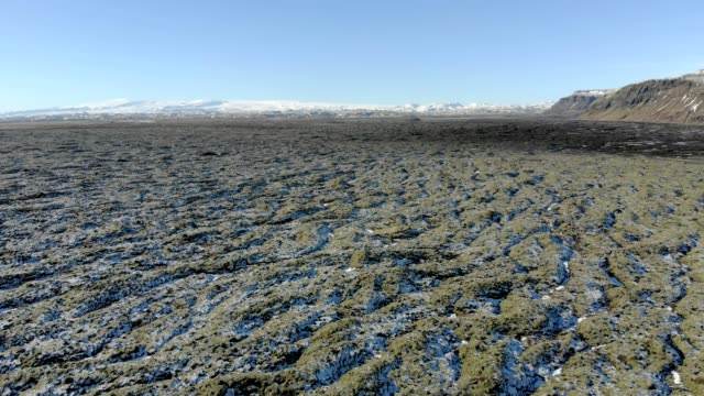 Icelandic moss on volcanic rocks.Iceland lava field covered with green moss