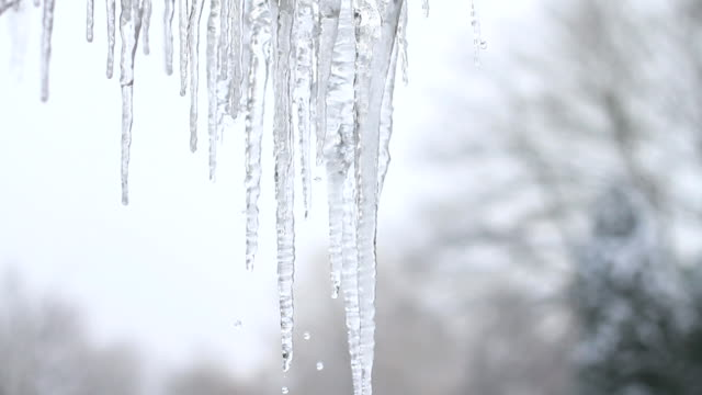Icicle Thaw video