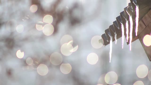 icicles melting spring bokeh video