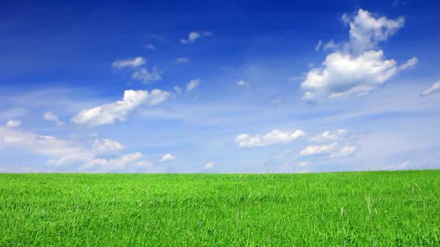 静かなグリーンフィールド、ブルースカイ ビデオ