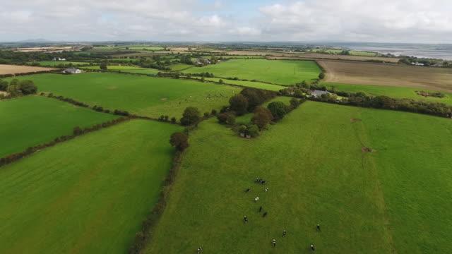 Idyllic fields of County Wexford Ireland video