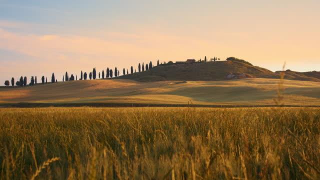 tuscan kırsalında ds pastoral evi - toskana stok videoları ve detay görüntü çekimi