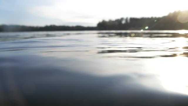 vídeos de stock e filmes b-roll de idyllic lake in the evening sun - margem do lago