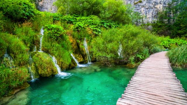 steadycam: idyllic landscape in plitvice lake national park in croatia - национальный парк плитвицкие озёра стоковые видео и кадры b-roll