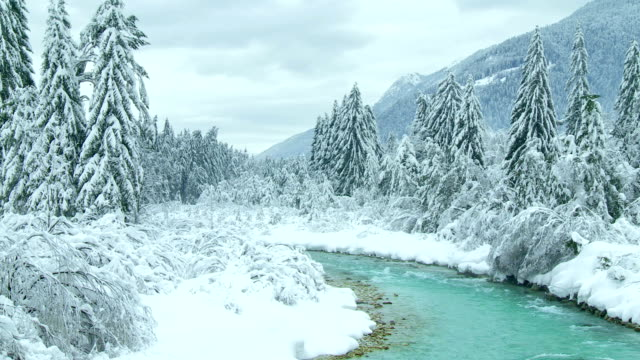 Idyllic Winter Landscape video