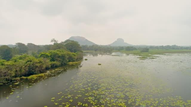 vídeos de stock e filmes b-roll de ws idyllic,placid marsh and lush landscape,sri lanka - sri lanka