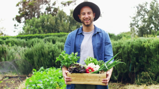 If it's homegrown you want, it's homegrown you'll get 4k footage of a young man carrying a basket of freshly picked produce on a farm homegrown produce stock videos & royalty-free footage