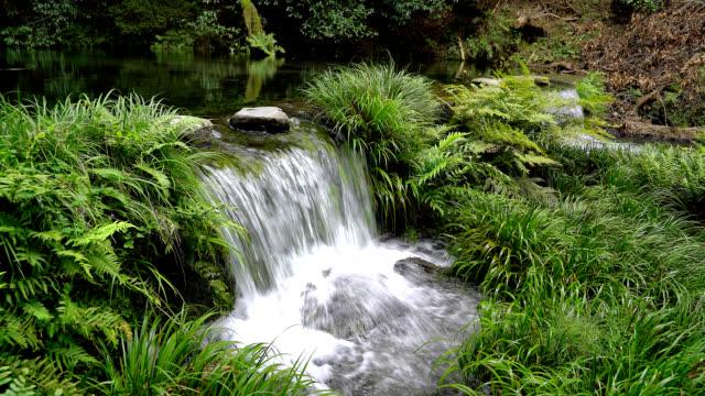 Ikeyamayusui spring water at Kumamoto prefecture in Japan video