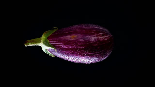illustration of aubergine horizontally spinning from top to bottom on black background. - melanzane video stock e b–roll