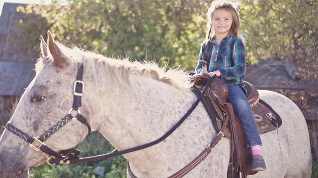 in a beautiful Autumn season of a young girl and horse in a beautiful Autumn season of a young girl and horse cowgirl stock videos & royalty-free footage