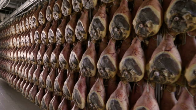 vídeos de stock e filmes b-roll de in a ham factory there are hams hung to season after having undergone the various processes according to the ancient italian tradition. - presunto