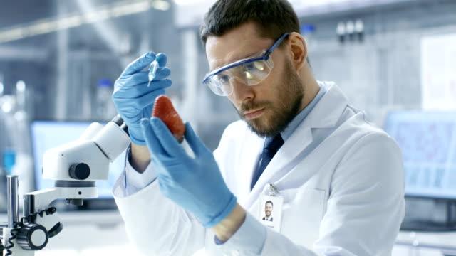 In einem modernen Labor Ernährungswissenschaftler Erdbeere mit einer Spritze injiziert. Er arbeitet an eine genetische Modifikationen dieses Produktes. – Video
