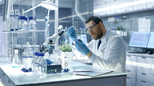 In einem modernen Forschung Wissenschaftler führt Laborexperimenten synthetisieren Verbindungen mit Einsatz von Dropper und Anlagen in einem Reagenzglas. – Video