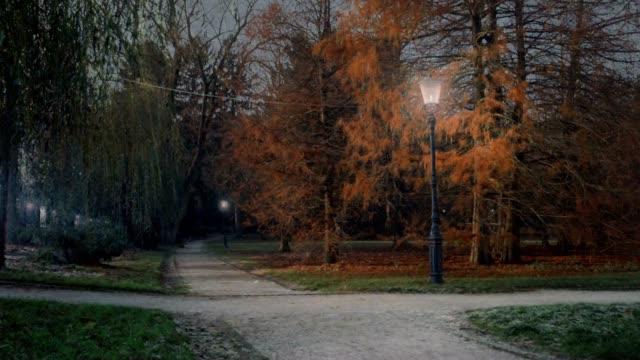 4 季節在古城公園 - four seasons 個影片檔及 b 捲影像