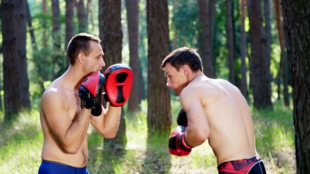 In boxing gloves, young athletic men with bare, naked torsos, box, practice the technique of strikes, capture, fight. Slow motion. In pine forest, in summer, in the rays of sun video