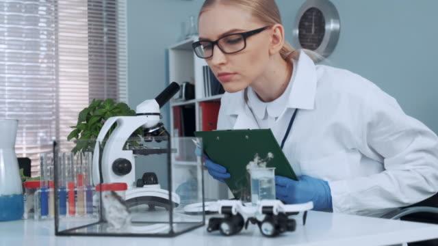 in chemielabor forscher machen beobachtungen von laborhamster - wissenschaftlerin stock-videos und b-roll-filmmaterial