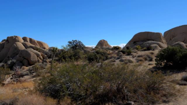 丸い大きな石が 4 k を遅いの砂漠ジョシュア ツリー公園サボテンの動き - ジョシュアツリー国立公園点の映像素材/bロール