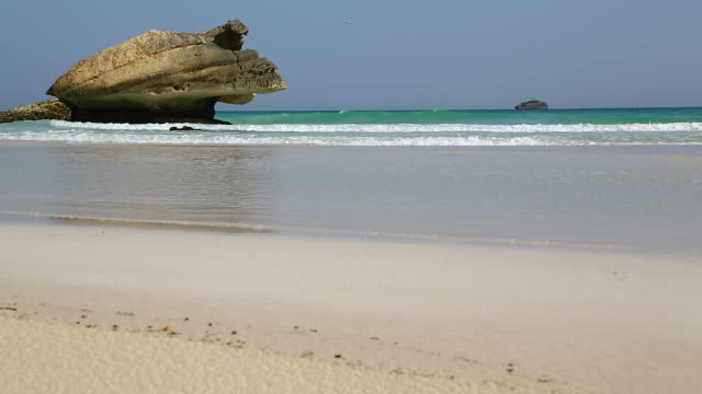 in oman beach foam and froath coastline  beach video