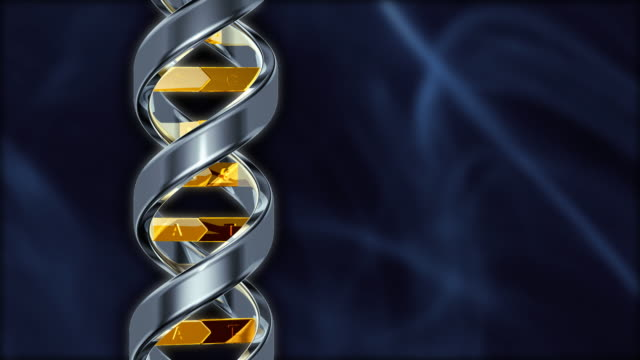 DNA in Silver and Gold DNA in Silver and Gold high scale magnification stock videos & royalty-free footage