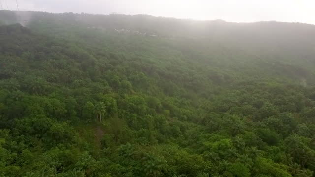 In the clouds over lush tropical forest video