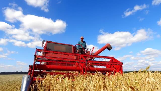 vidéos et rushes de dans le domaine moissonneur moissonne millet - équipement agricole