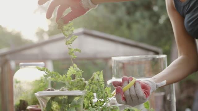 BRICOLAJE en el jardín. Madre e hijo - vídeo