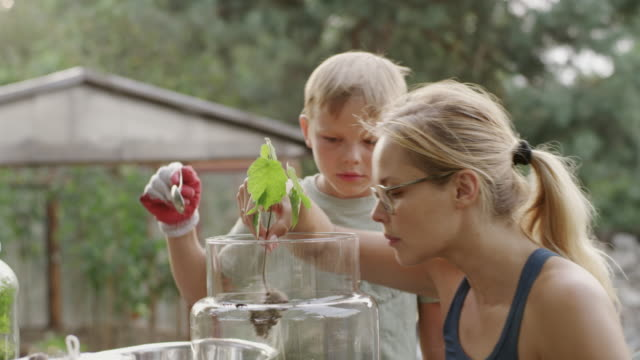 DIY in the garden. Mother and son video