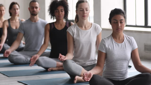 Indian ethnicity sportive girl with like-minded people meditating indoors At yoga session Indian sporty girl and multi-ethnic like-minded people sit cross-legged in row on mats closed eyes are in state of deep meditation, improve inner balance, keep calm, no stress concept mental wellbeing stock videos & royalty-free footage