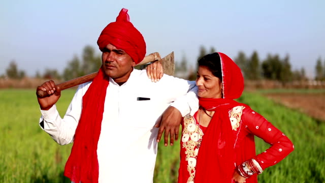 Indian farmer standing in the field with his wife HD1080p: Mid adult cheerful farmer standing in the field with his wife & discussing something. haryana stock videos & royalty-free footage