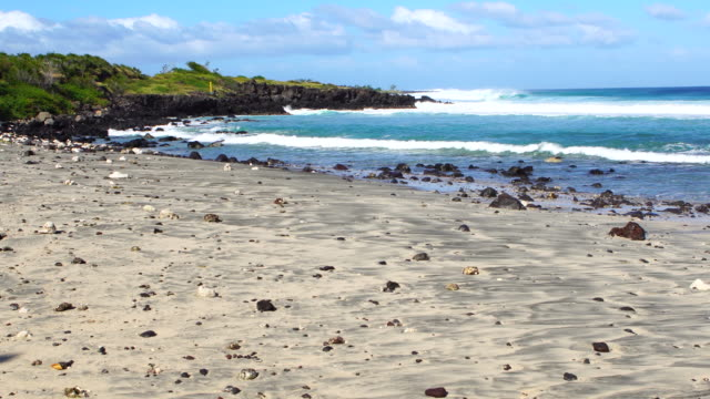 Indian Ocean in Reunion Island video