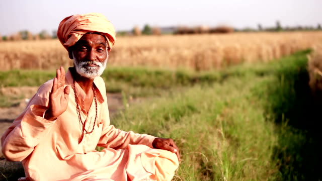 Indian sadhu sitting in nature & giving blessing video