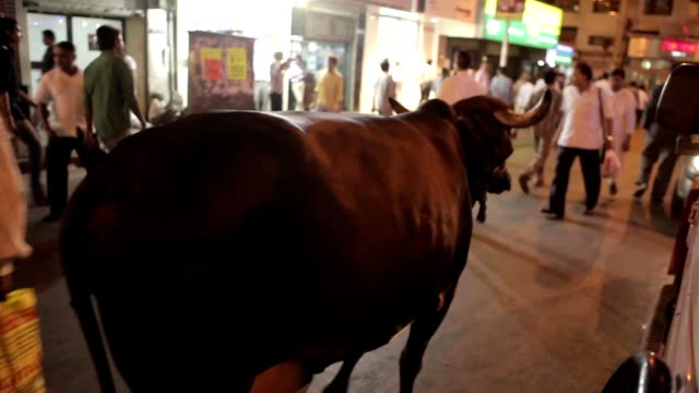 Indians on the streets of Mumbai, India. video