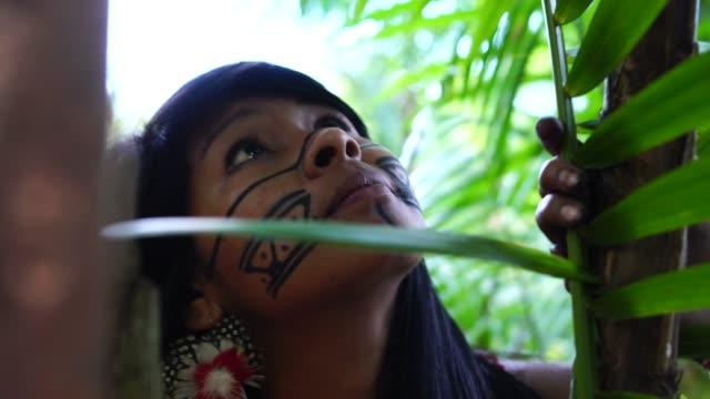 vídeos de stock, filmes e b-roll de mulher jovem brasileira indígena descoberta da floresta, da etnia guarani - brasileiro pardo