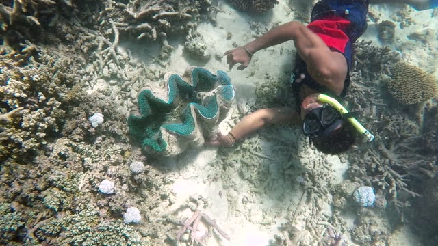 Indigenous Fijian man during a dive trip to a Giant clams video